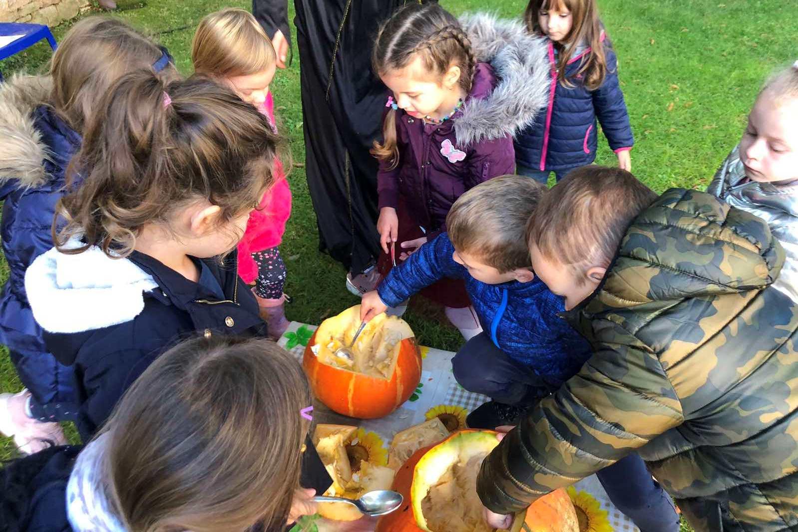 http://www.novigrad.hr/u_vrtiu_suncokret_girasole_priredili_tjedan_pun_aktivnosti_u_znaku_jeseni