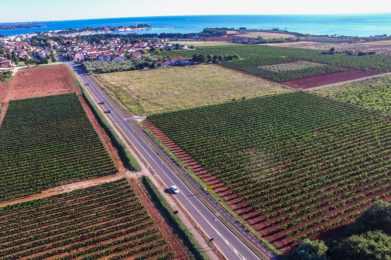 http://www.novigrad.hr/indetta_la_gara_dappalto_per_laffitto_di_terreni_agricoli_di_proprieta_dell
