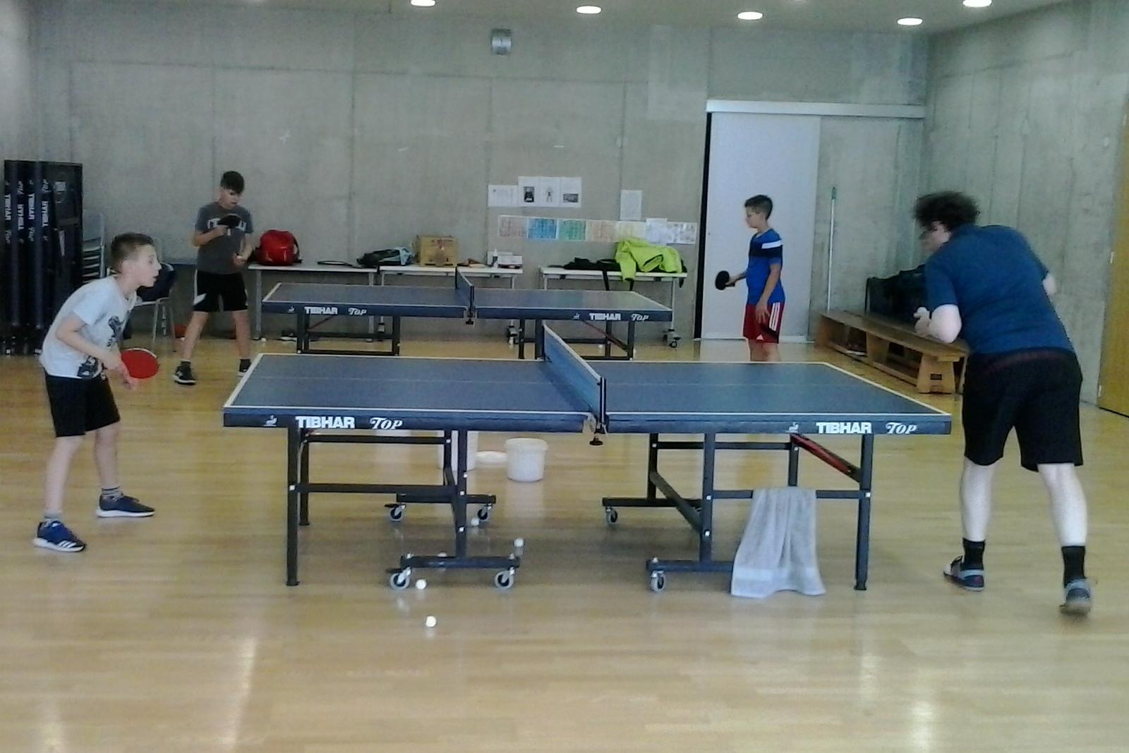 http://www.novigrad.hr/ctt_cittanova_il_campo_primaverile_di_tennistavolo