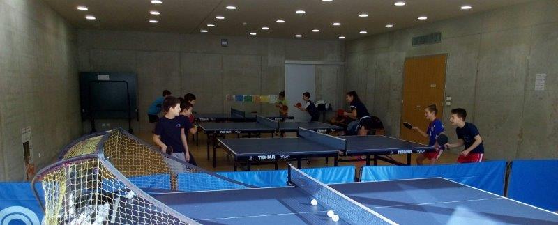 http://www.novigrad.hr/si_e_concluso_il_terzo_campo_di_tennistavolo_a_cittanova