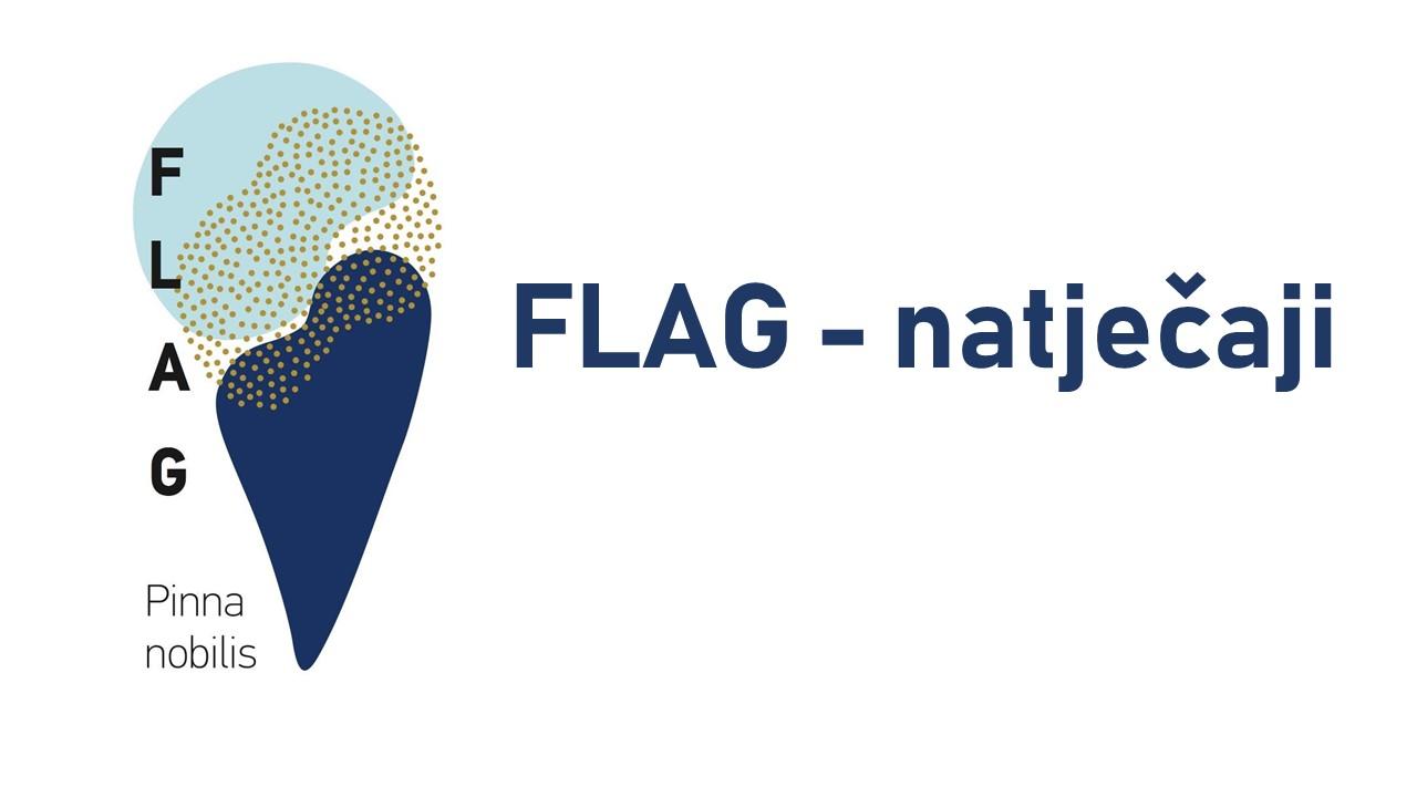 http://www.novigrad.hr/objavljen_3._flag_natjechaj_za_podmjeru_3.1.1._potpora_za_edukativne_aktivn