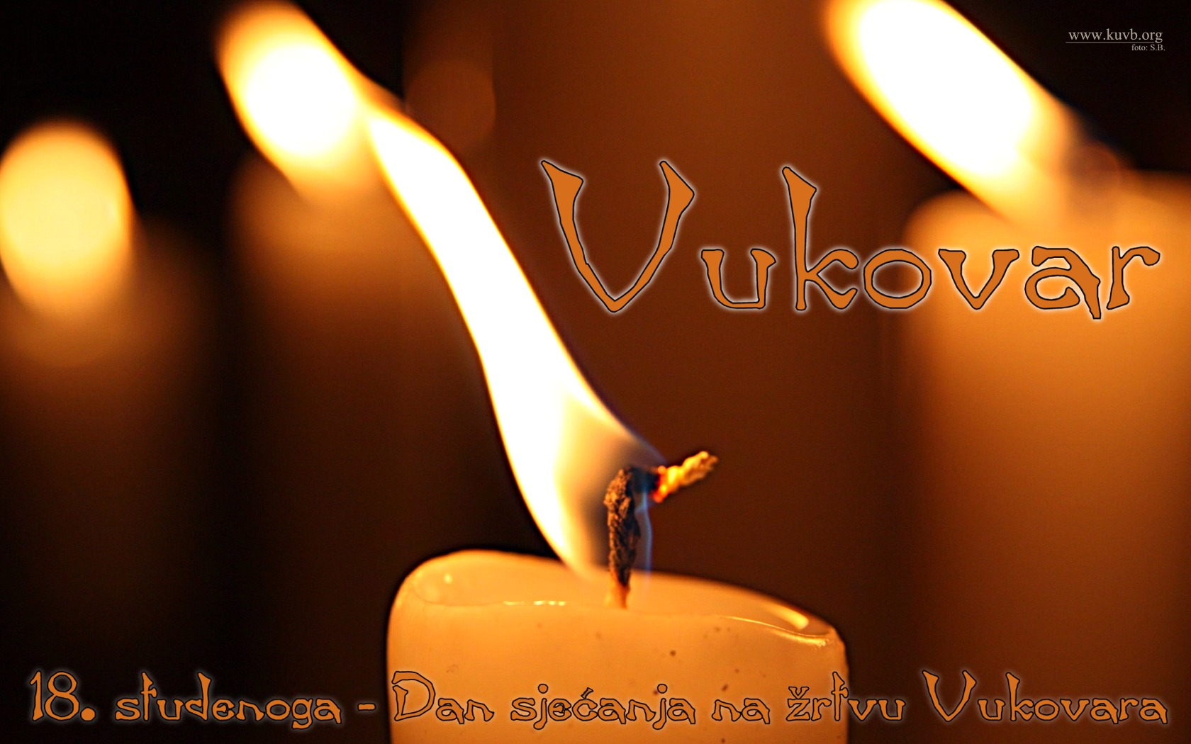 http://www.novigrad.hr/nella_giornata_del_ricordo_di_vukovar_e_organizzata_la_visita_a_questa_citt