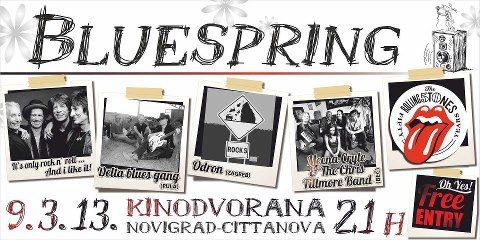 http://www.novigrad.hr/3._bluespring_festival