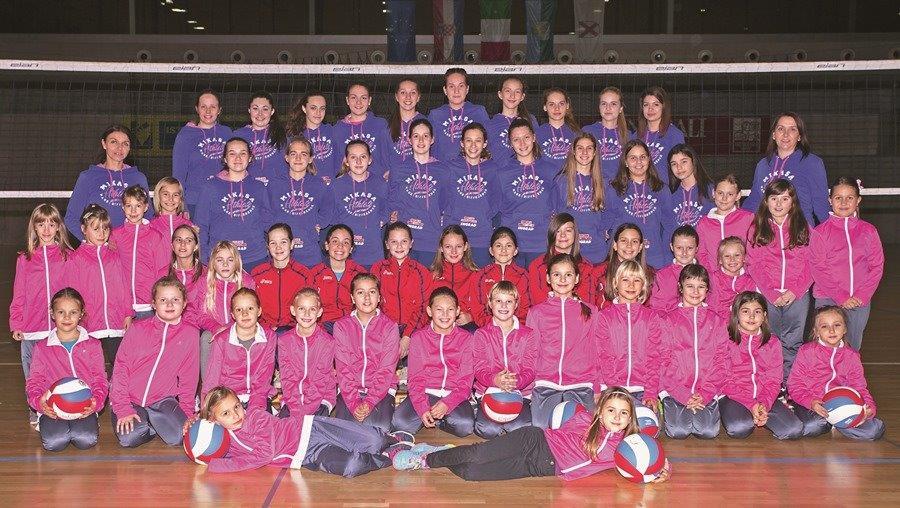 http://www.novigrad.hr/club_di_pallavolo_cittanova_risultati_delle_competizioni