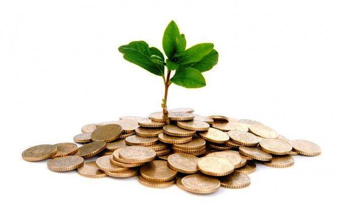 http://www.novigrad.hr/novigradskim_poduzetnicima_na_raspolaganju_117_milijuna_kuna_putem_subvenci