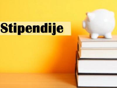 http://www.novigrad.hr/iz_gradskog_prorachuna_financiraju_se_42_stipendije