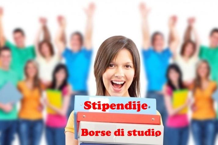 http://www.novigrad.hr/41_borse_di_studio_finanziate_con_il_bilancio_cittadino