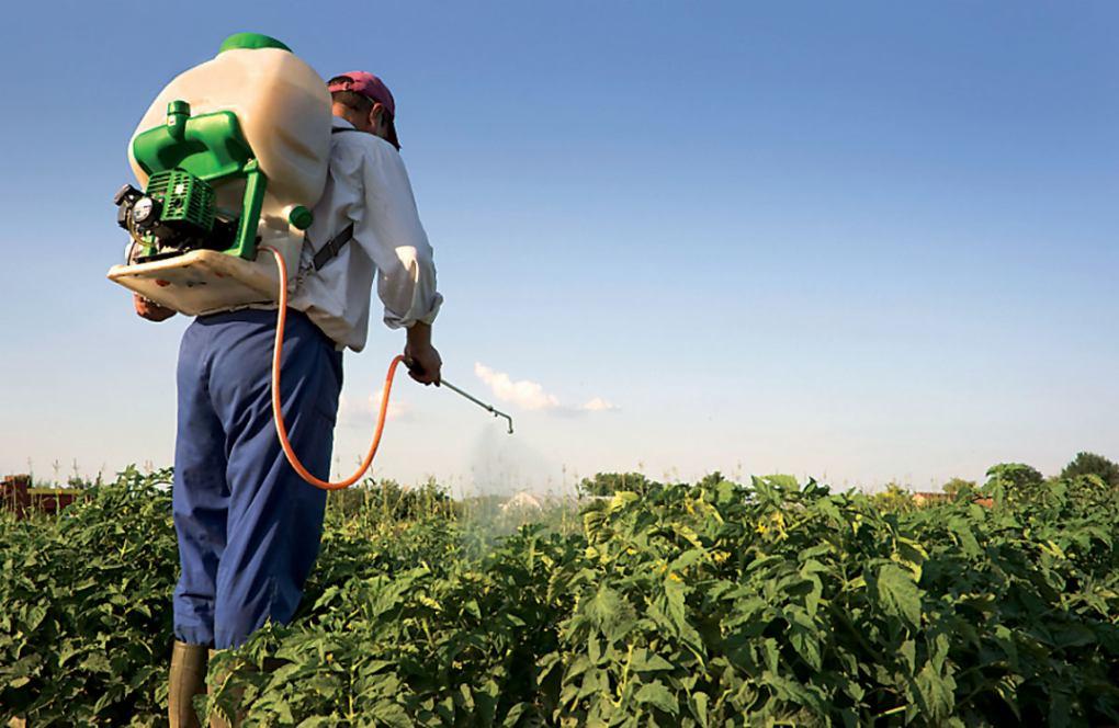 http://www.novigrad.hr/poziv_na_techaj_sigurnog_rukovanja_pesticidima1