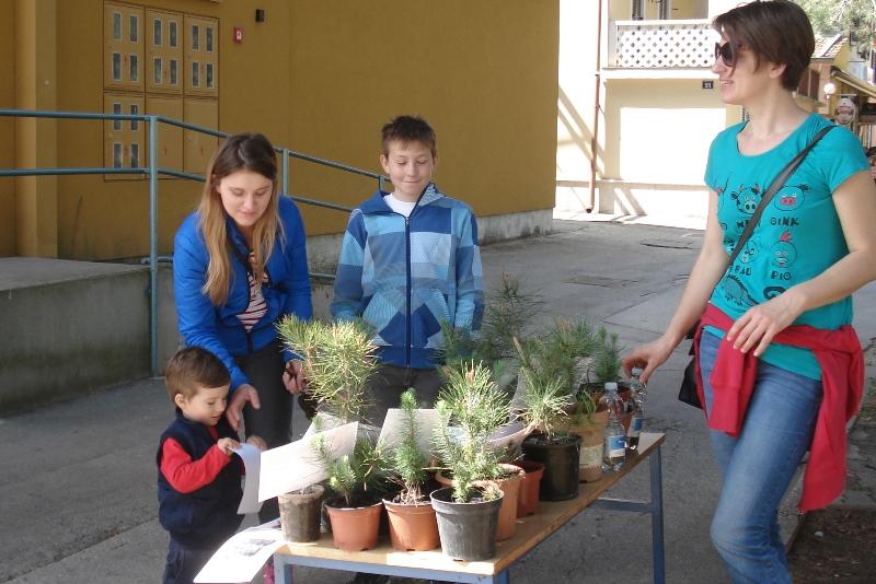 http://www.novigrad.hr/zeleni_novigrad_na_dan_planete_zemlje_sugraanima_dijelio_sadnice_bora