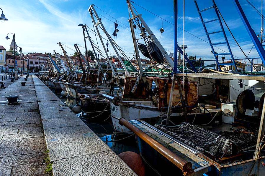 https://novigrad.hr/ministarstvo_poljoprivrede_osiguralo_239_milijuna_eura_potpore_ribarima