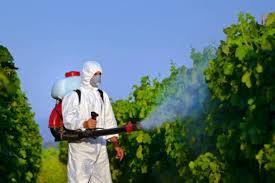 https://novigrad.hr/techaj_sigurnog_rukovanja_pesticidima_15._listopada_u_novigradu